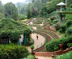 Kodaikanal Tourism Package